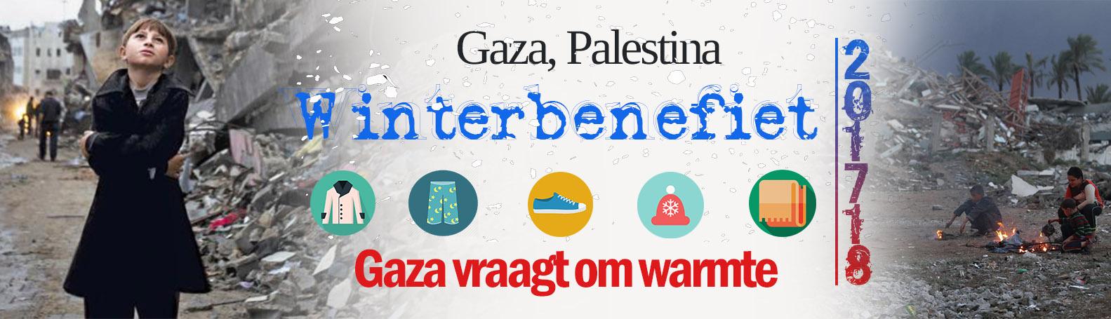 Palestina banner formaat